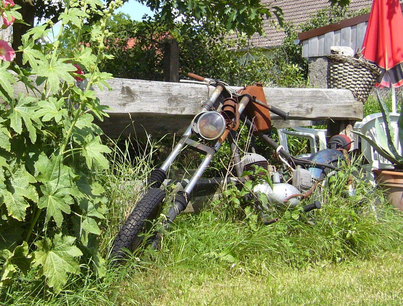 CF-Biker012